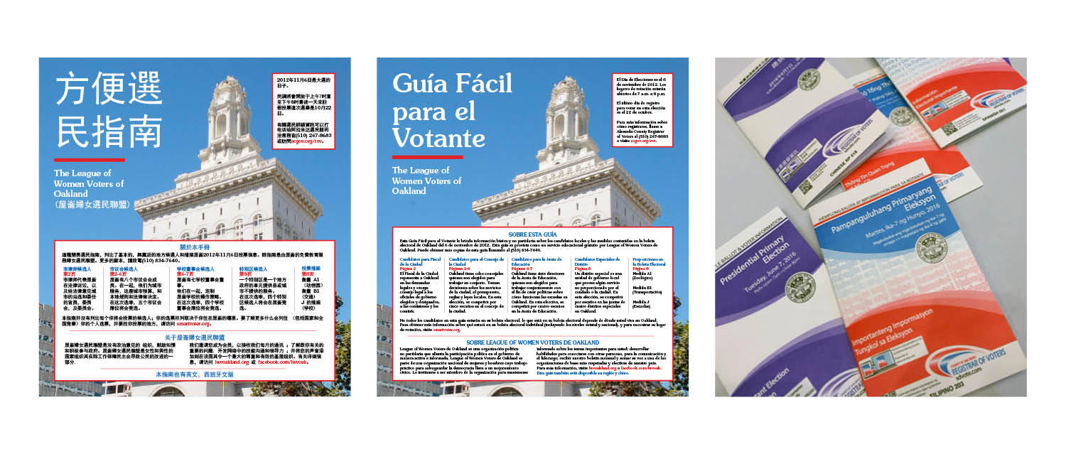 Voter guides divided into different books by language
